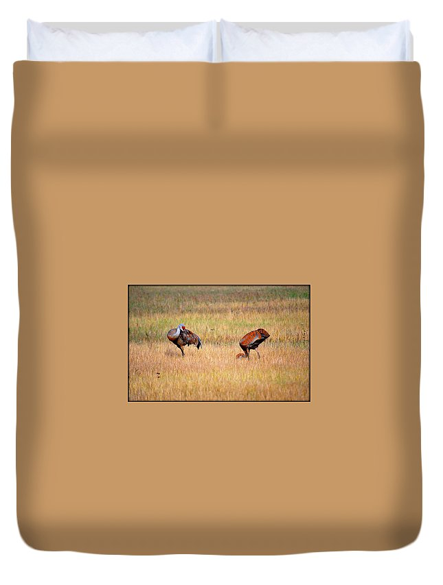 Bird Duvet Cover featuring the photograph Father An Son by Kathy Sampson