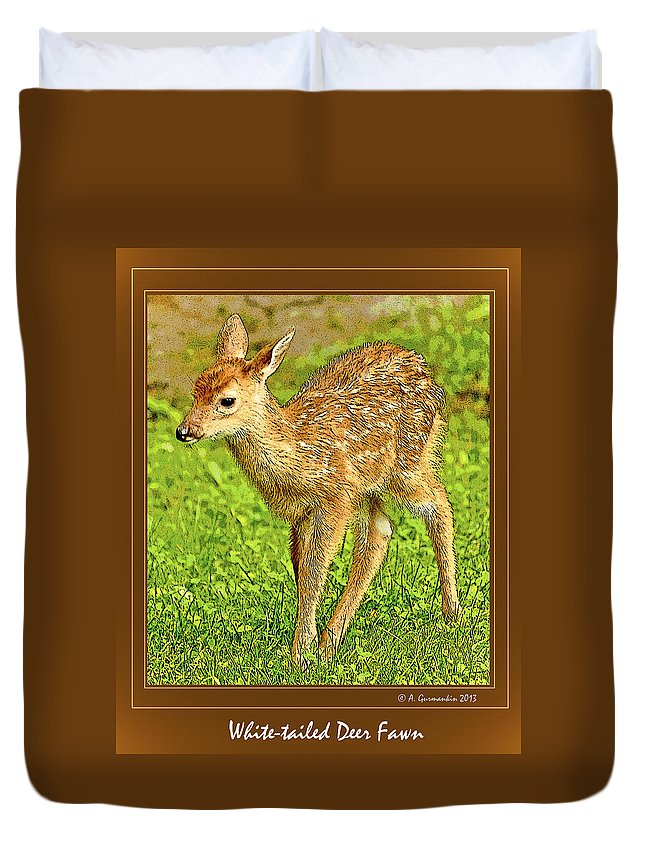White-tailed Deer Duvet Cover featuring the photograph Fawn Poster Image by A Gurmankin