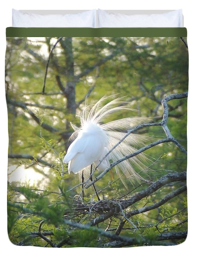 Egret Duvet Cover featuring the photograph Feathered by Lizi Beard-Ward