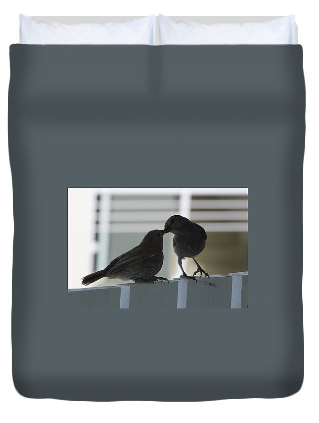 Birds Duvet Cover featuring the photograph Feed Me by Catie Canetti
