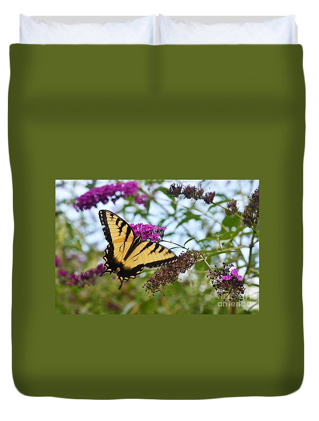 Butterflies Duvet Cover featuring the photograph Feeling Pretty by Judy Wolinsky