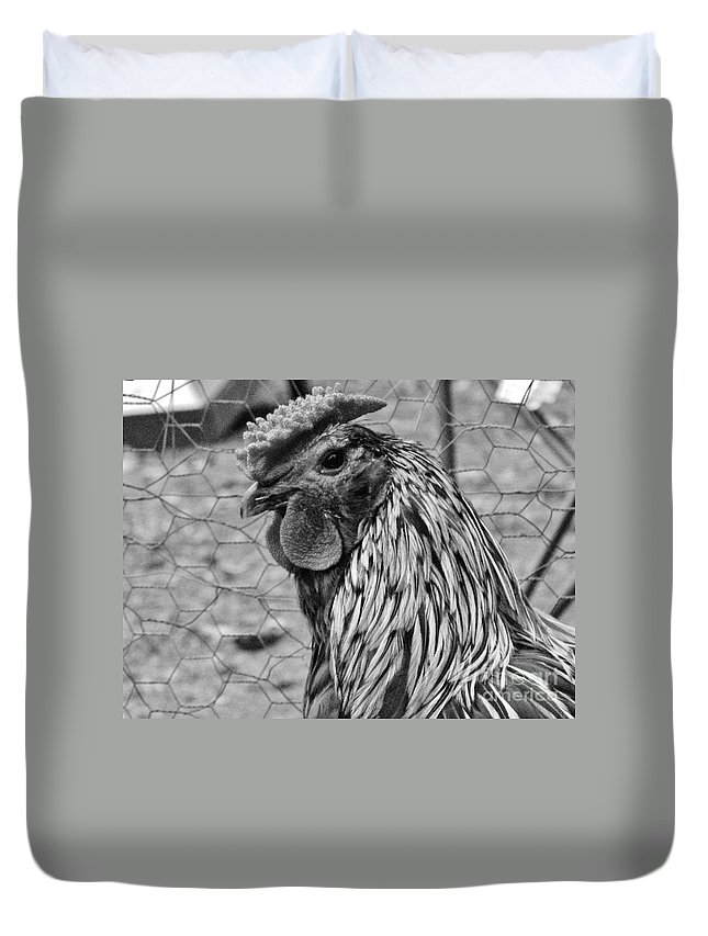 Rooster Duvet Cover featuring the photograph Felicia's Raving Rooster by Keri West