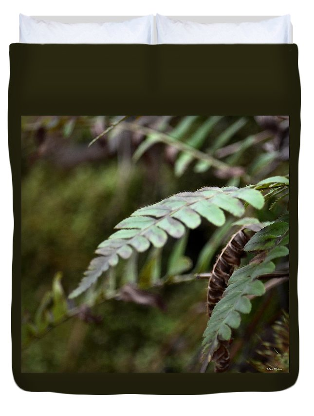 Fern Fronds Duvet Cover featuring the photograph Fern Fronds by Maria Urso