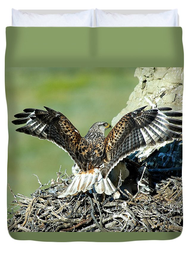 Animal Duvet Cover featuring the photograph Ferruginous Hawk Male At Nest by Anthony Mercieca