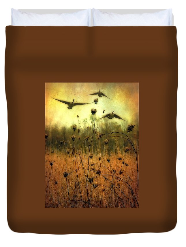 Geese Duvet Cover featuring the photograph Field Dwellers by Gothicrow Images