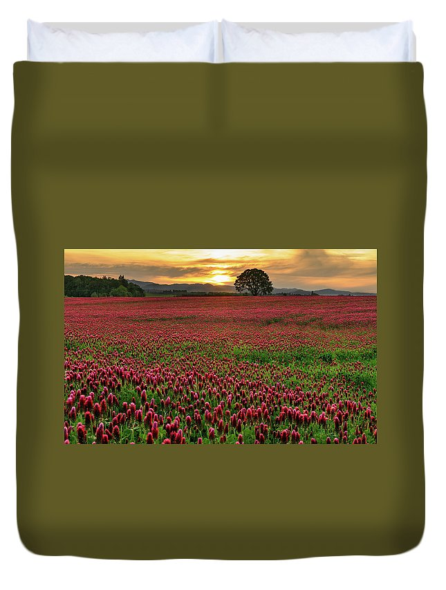 Scenics Duvet Cover featuring the photograph Field Of Crimson Clover With Lone Oak by Jason Harris
