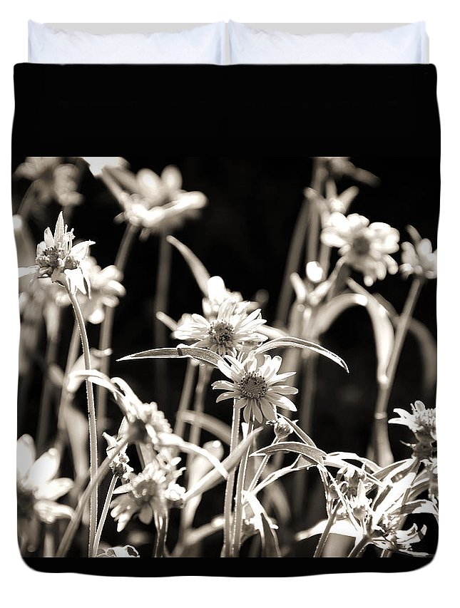 Sepia Duvet Cover featuring the photograph Field Of Daisies by Shawn McMillan