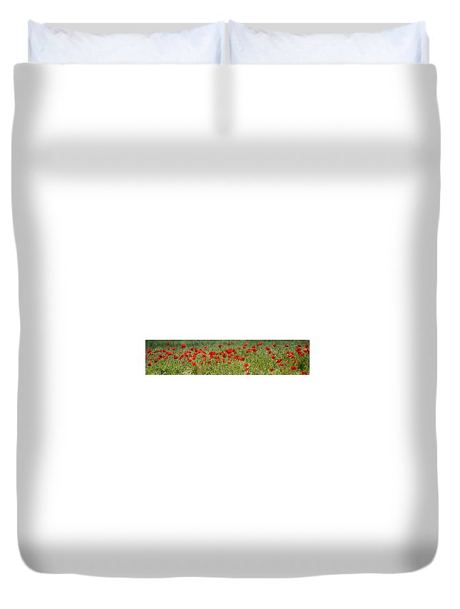 Poppies Duvet Cover featuring the photograph Field Of Poppies by Carol Lynch