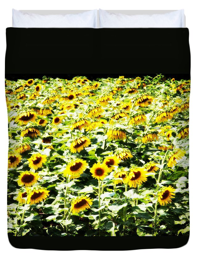 Sunflowers Duvet Cover featuring the photograph Field Of Sunflowers by Alice Gipson