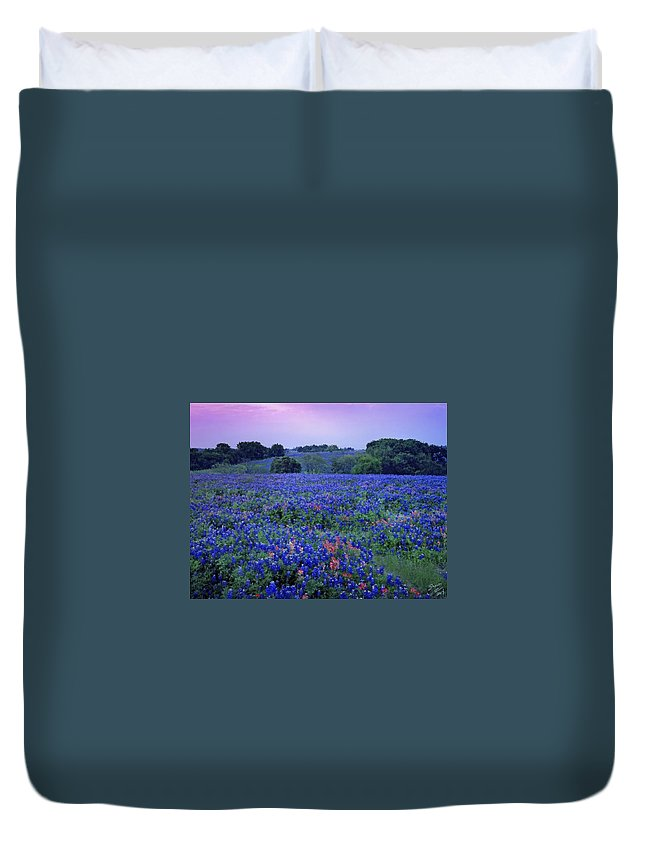 Bluebonnet Duvet Cover featuring the painting Fields Of Blue by Shere Crossman