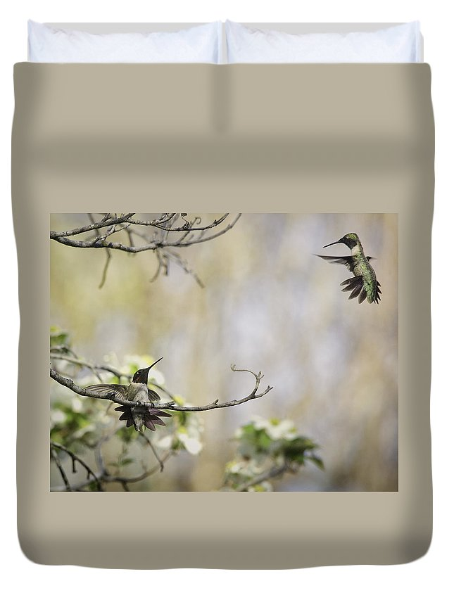 Ruby Throated Hummingbird Duvet Cover featuring the photograph Fighting Ruby Throated Hummingbirds by Michael Dougherty
