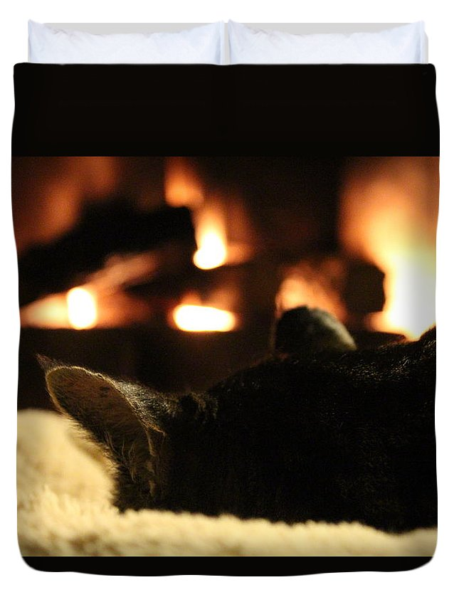 Fire Duvet Cover featuring the photograph Fireside Cat Nap by Nicholas Miller