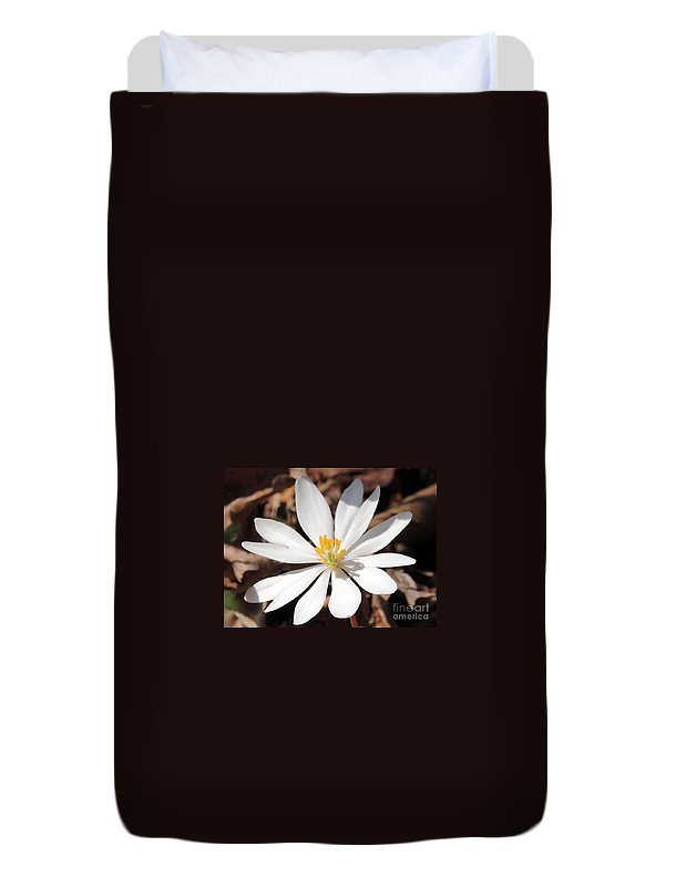 Bloodroot Duvet Cover featuring the photograph First Sign Of Spring by Lydia Holly