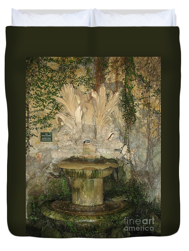 Fountain Duvet Cover featuring the photograph Fish Fountain by Christiane Schulze Art And Photography