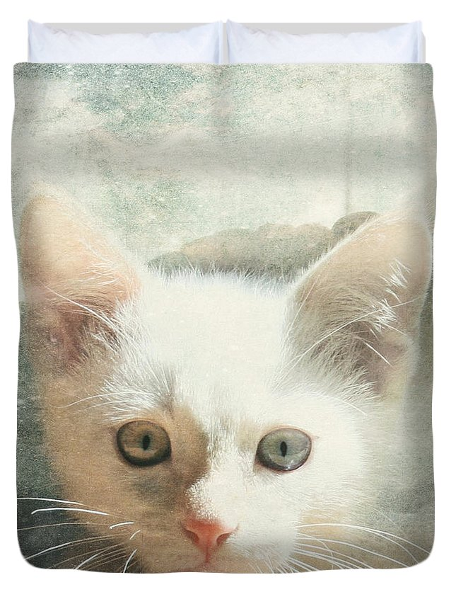 Kitten Duvet Cover featuring the photograph Flamepoint Siamese Kitten by Pam Holdsworth