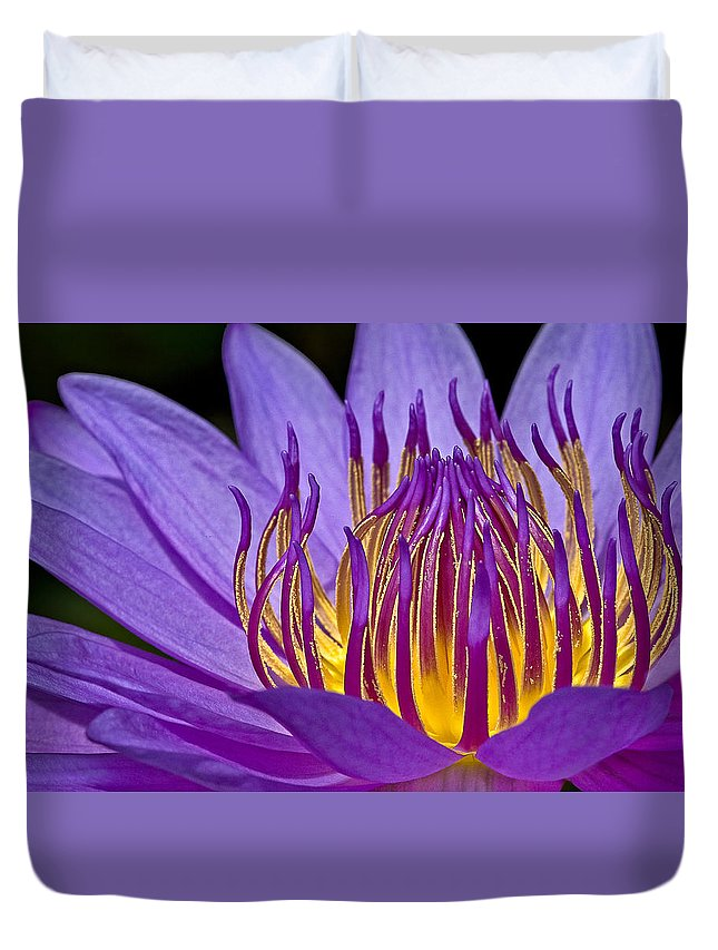 Waterlily Duvet Cover featuring the photograph Flaming Heart by Susan Candelario