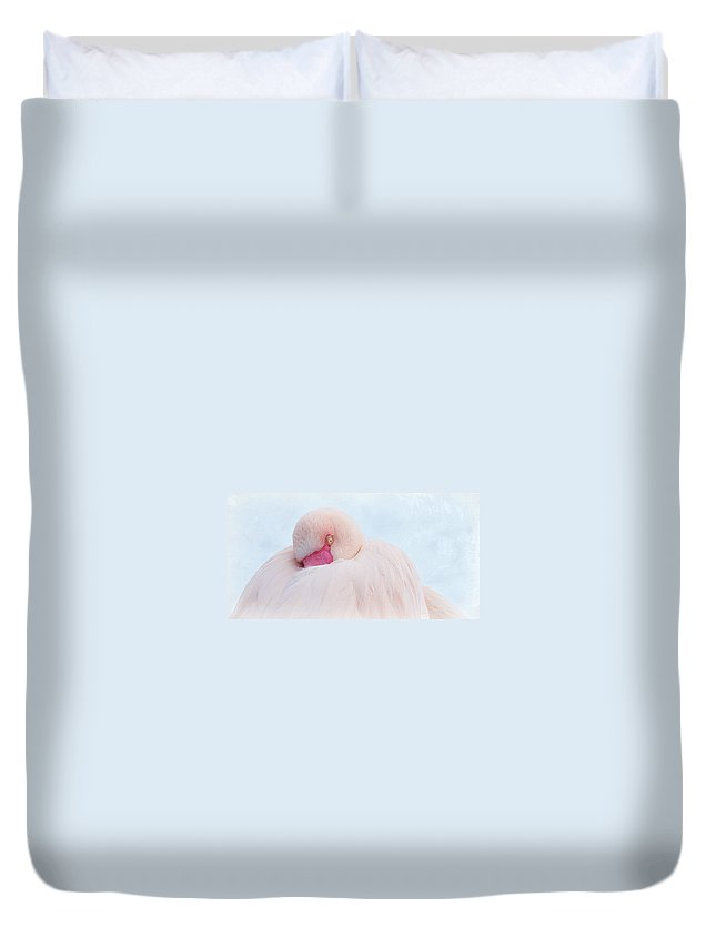 Flamingo Duvet Cover featuring the photograph Flamingo by Heike Hultsch