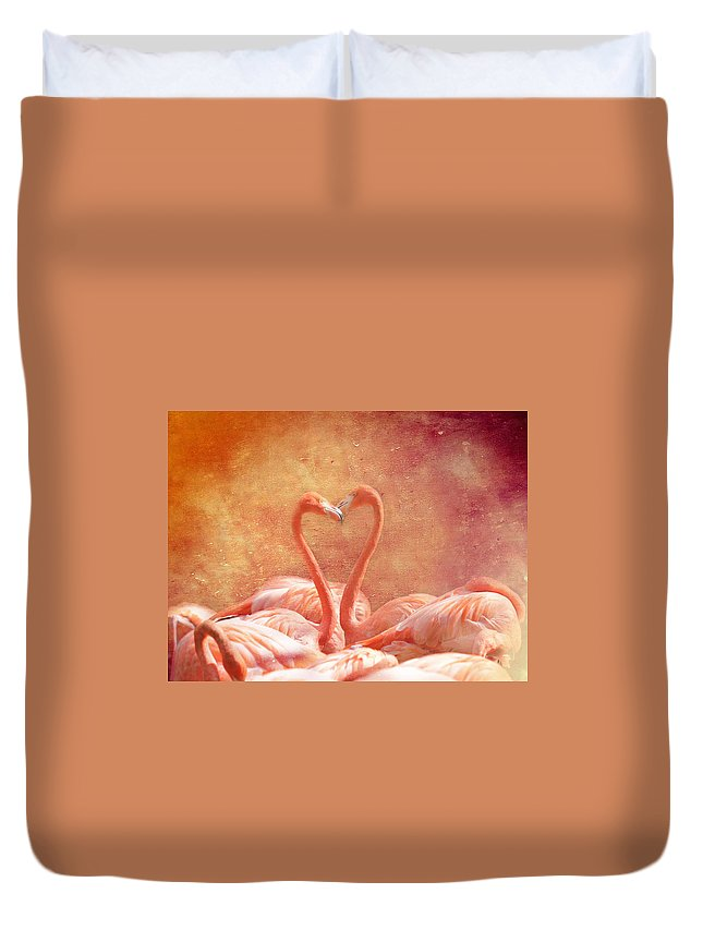 Flamingo Duvet Cover featuring the photograph Flamingo Love by Heike Hultsch