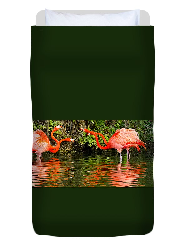 Angry Duvet Cover featuring the photograph Flamingo Panorama by Les Palenik