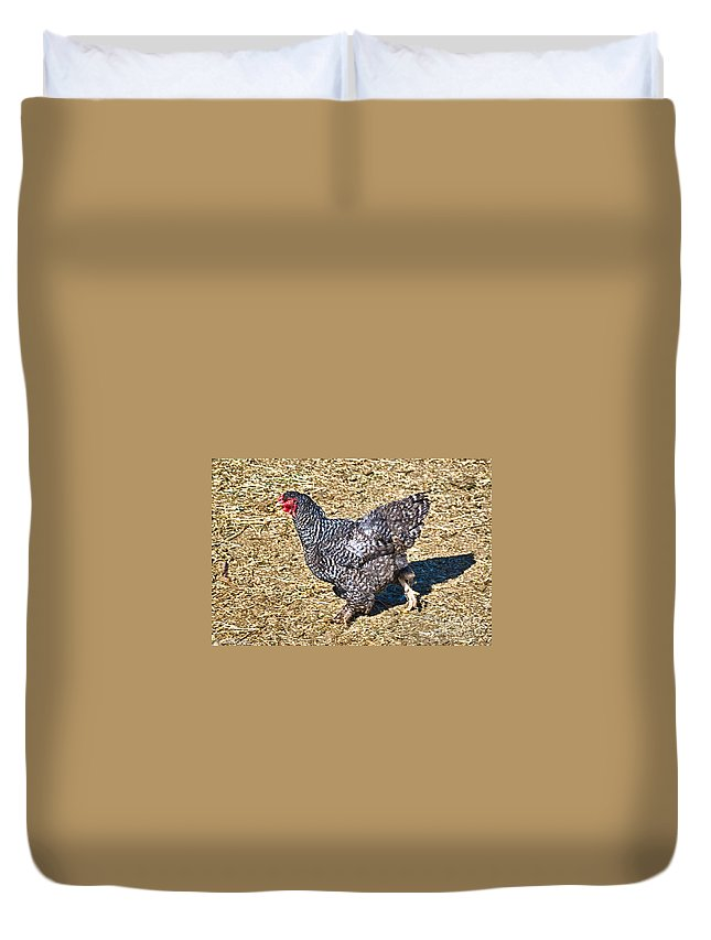 Chicken Duvet Cover featuring the photograph Fleeing From The Colonel ? by Bob and Nadine Johnston