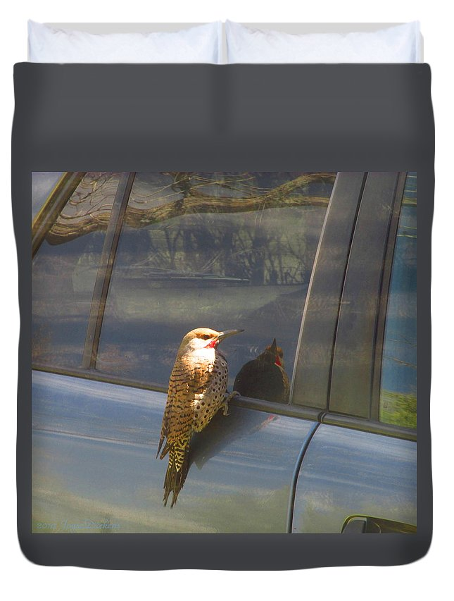 Flicker Duvet Cover featuring the photograph Flicker Looking At His Reflection by Joyce Dickens