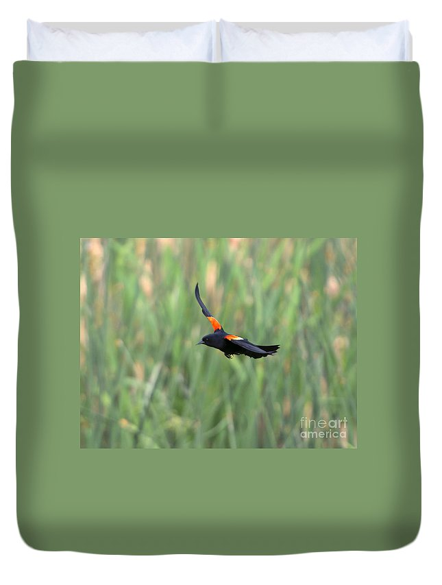 Red Winged Blackbird Duvet Covers
