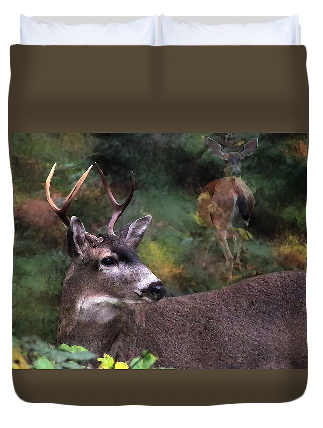 Black-tailed Deer Duvet Cover featuring the photograph Flirt by I'ina Van Lawick