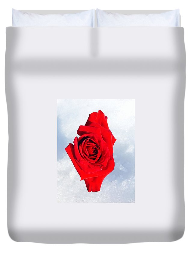 Roses Duvet Cover featuring the photograph Float by Gillis Cone
