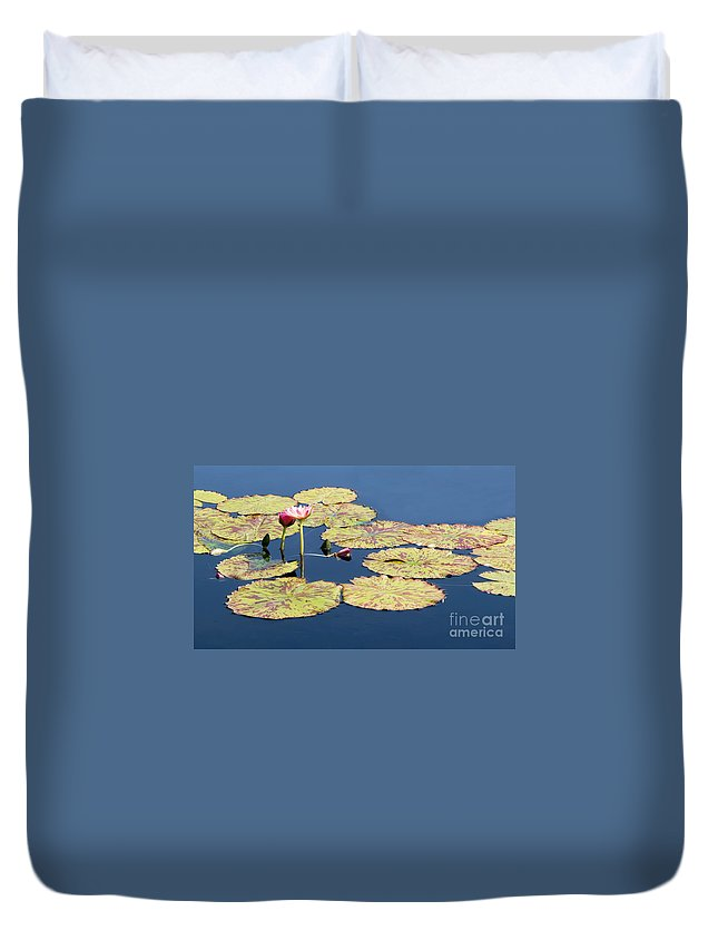 Lotus Duvet Cover featuring the photograph Floating On The Breath by Barbara McMahon