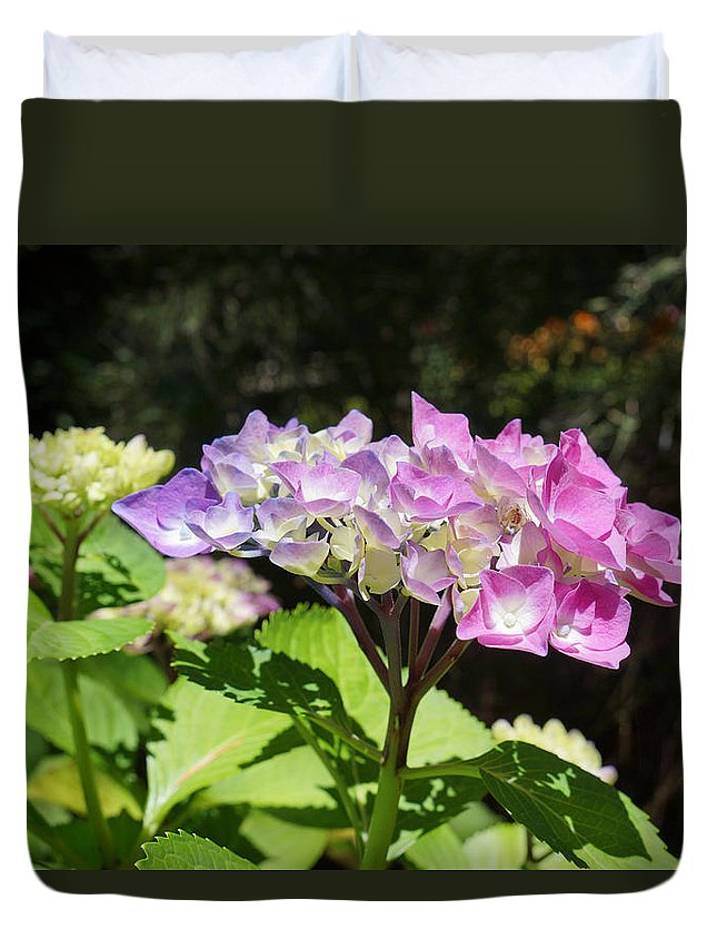 Lavender Duvet Cover featuring the photograph Floral Art Photography Pink Lavender Hydrangeas by Baslee Troutman