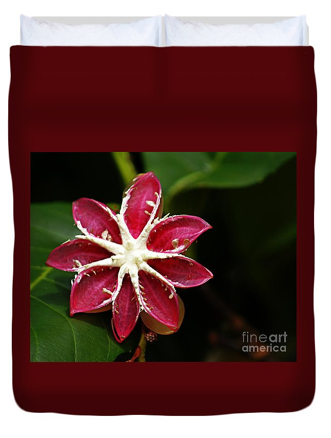 Flowers Duvet Cover featuring the photograph Flower 11 by Ben Yassa
