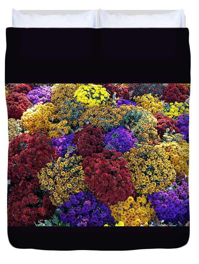 Paris Duvet Cover featuring the photograph Flower Bed Across The Street From The Grand Palais Off Of Champs Elysees by Richard Rosenshein