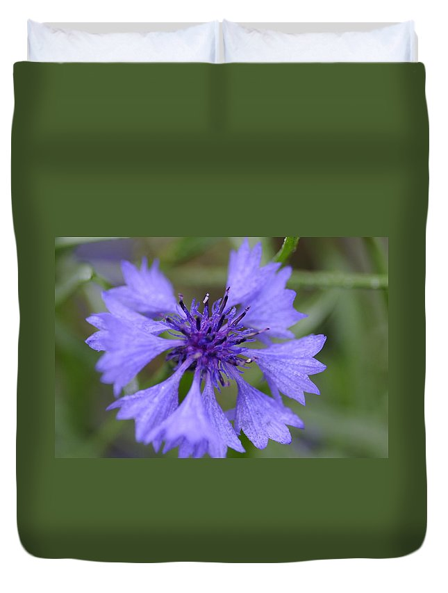 Flower Duvet Cover featuring the photograph Flower Blues by Miguel Winterpacht