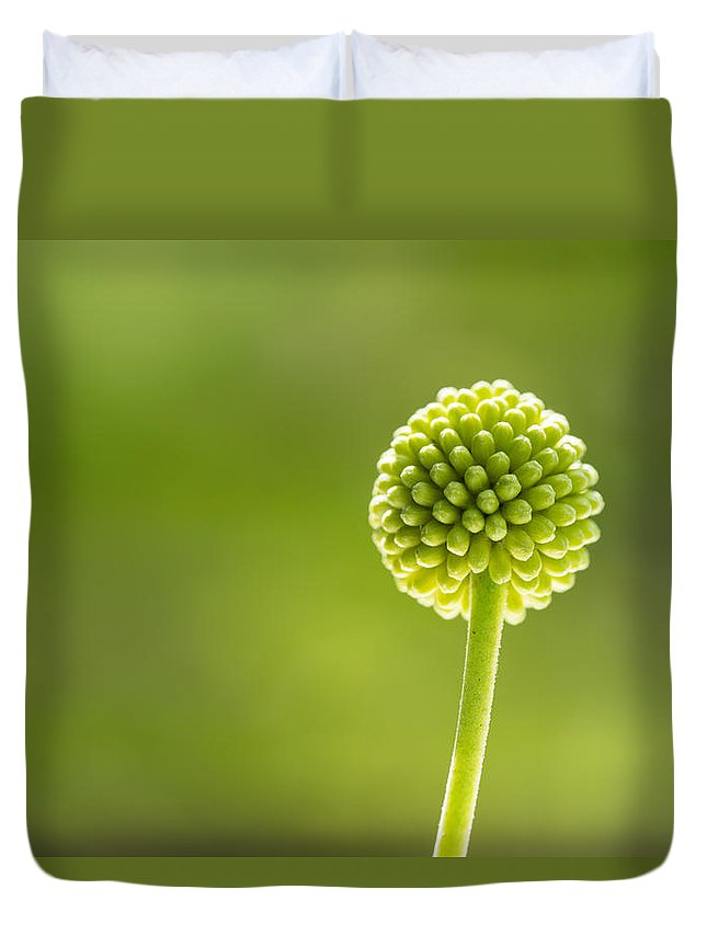 Background Duvet Cover featuring the photograph Flower Bud by Kim Pin Tan