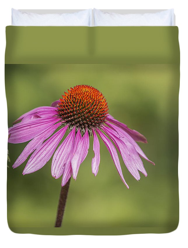 Michigan State University Duvet Cover featuring the photograph Flower Close Up At Michigan State University by John McGraw