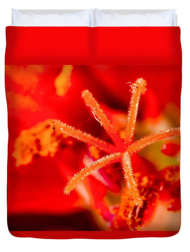 Flower Close Up Duvet Cover featuring the photograph Flower Close Up I by Agustin Uzarraga