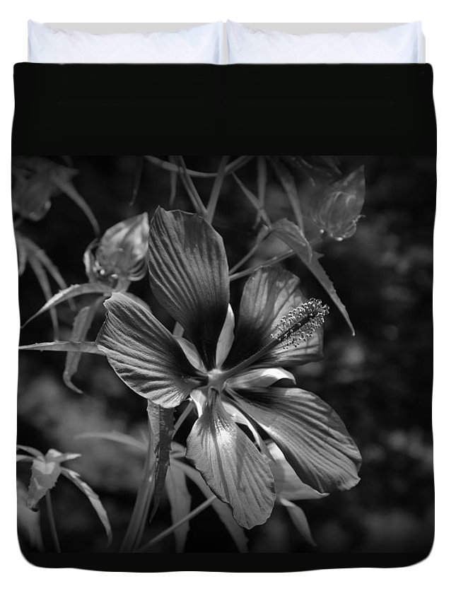 Flower In B&w Duvet Cover featuring the photograph Flower In B-w by Beth Vincent