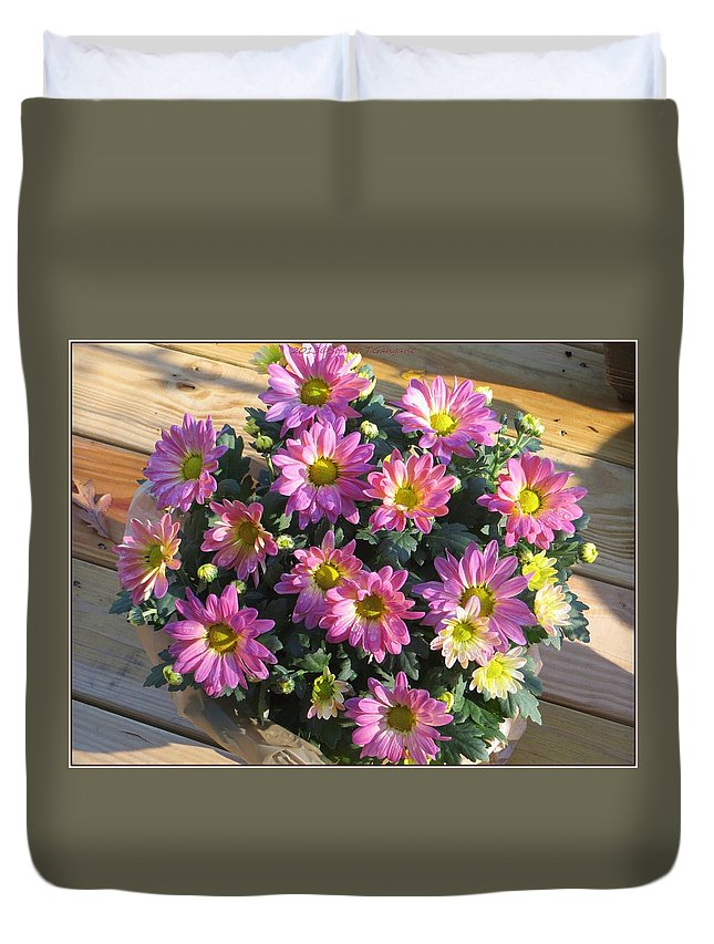 Pink Mums Duvet Cover featuring the photograph Flower Of Fall by Sonali Gangane