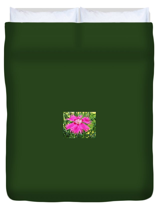 Flower Duvet Cover featuring the photograph Flower Pink by Eric Schiabor