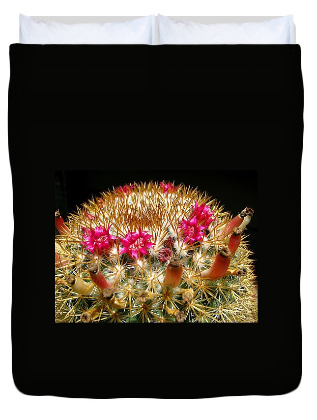 Cactus Duvet Cover featuring the photograph Flowering Cactus by C Ray Roth