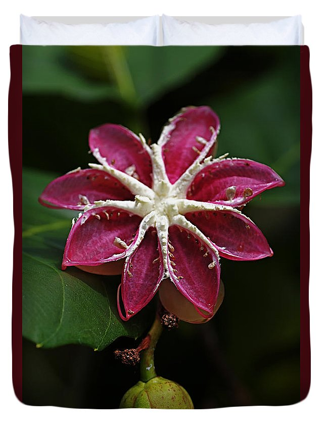 Flowers Duvet Cover featuring the photograph Flowers 12 by Ben Yassa