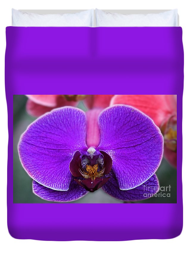 Flowers Duvet Cover featuring the photograph Flowers 13 by Ben Yassa