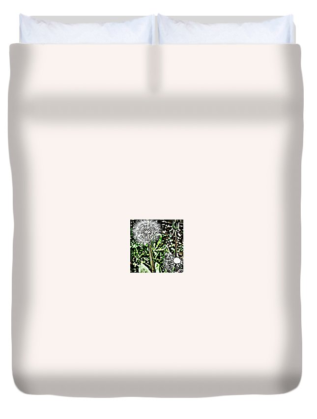 Beautiful Duvet Cover featuring the photograph Dandelions by J Roustie