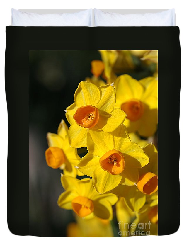 Floral Duvet Cover featuring the photograph flowers-Jonquils-bright yellow by Joy Watson