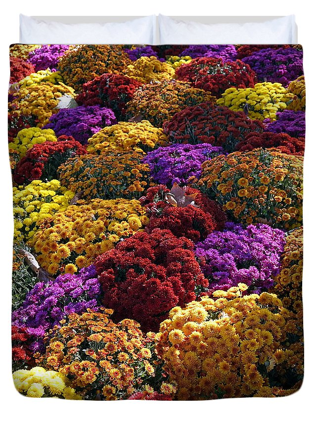 Paris Duvet Cover featuring the photograph Flowers Near The Grand Palais Off Of Champ Elysees In Paris France  by Richard Rosenshein