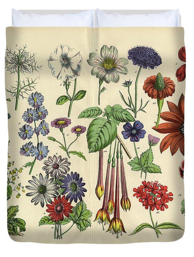 Lantana Duvet Cover featuring the digital art Flowers Of The Garden, Victorian by Bauhaus1000