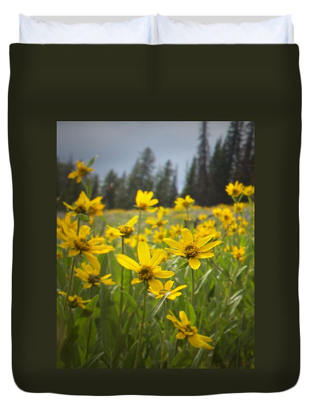 Daisy Duvet Cover featuring the photograph Flowers That Are Wild by Belinda Greb