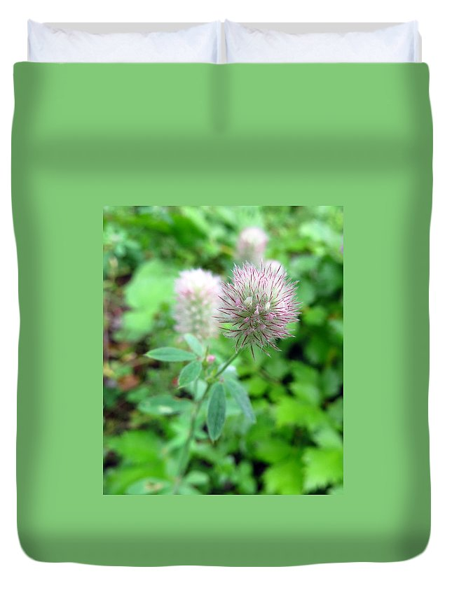 Flower Duvet Cover featuring the photograph Rabbit-foot Clover by J L Kempster