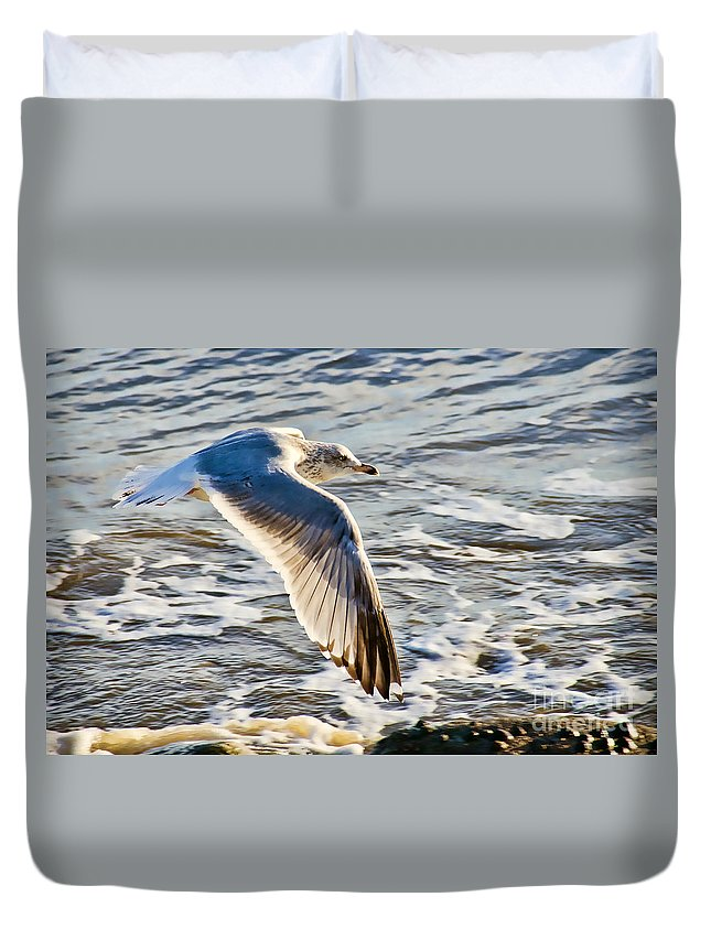 Gull Duvet Cover featuring the photograph Fly By by Susie Peek