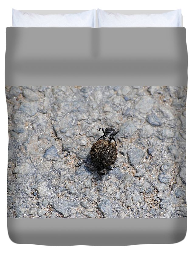 Fly Duvet Cover featuring the photograph Fly by FL collection